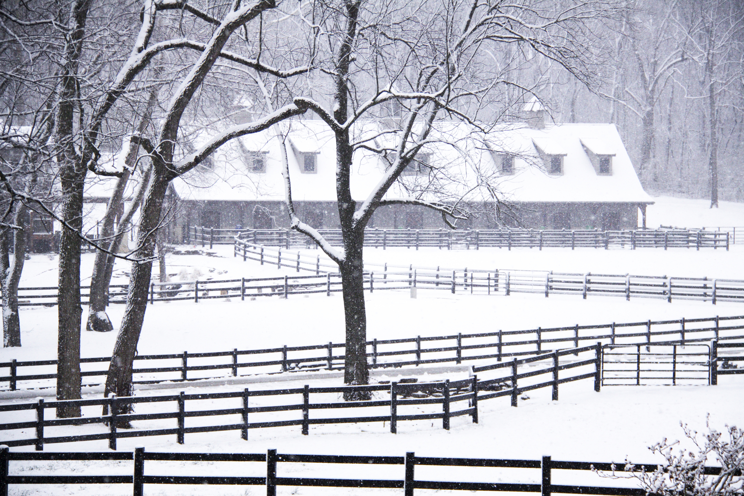 snow barn.jpg