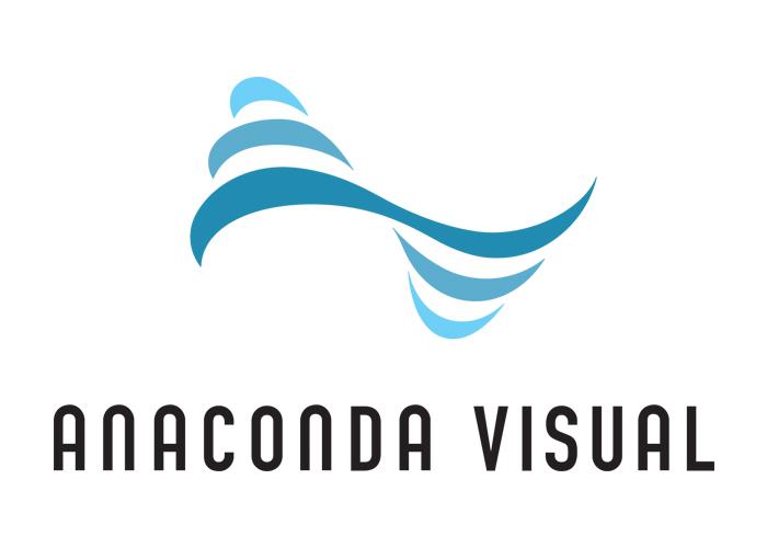 Anaconda Visual tarjoaa yrityksille audiovisuaalisia ratkaisuja