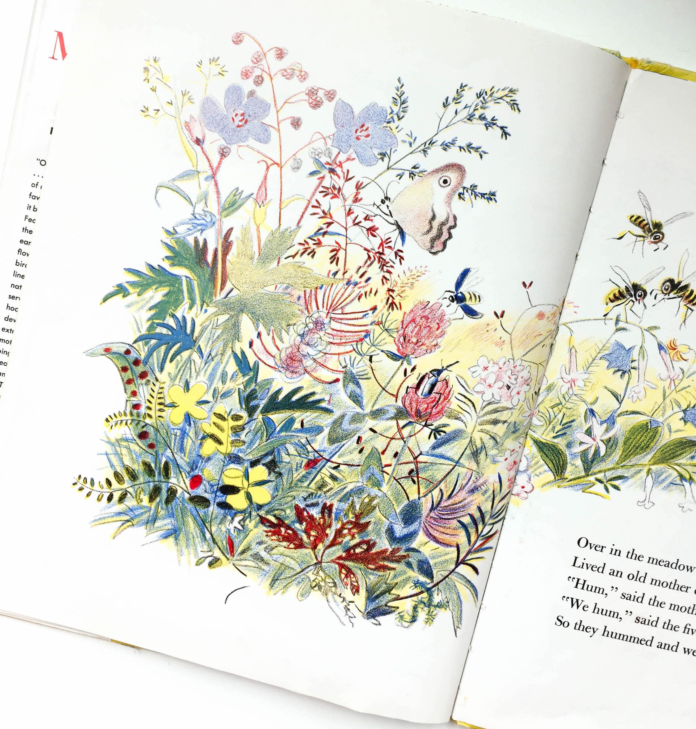 botanicals-29.jpg