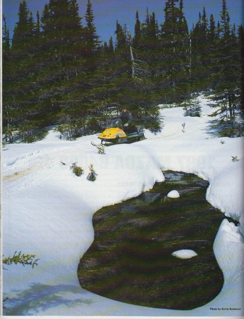 1997 NS p30 v7 n1.jpg