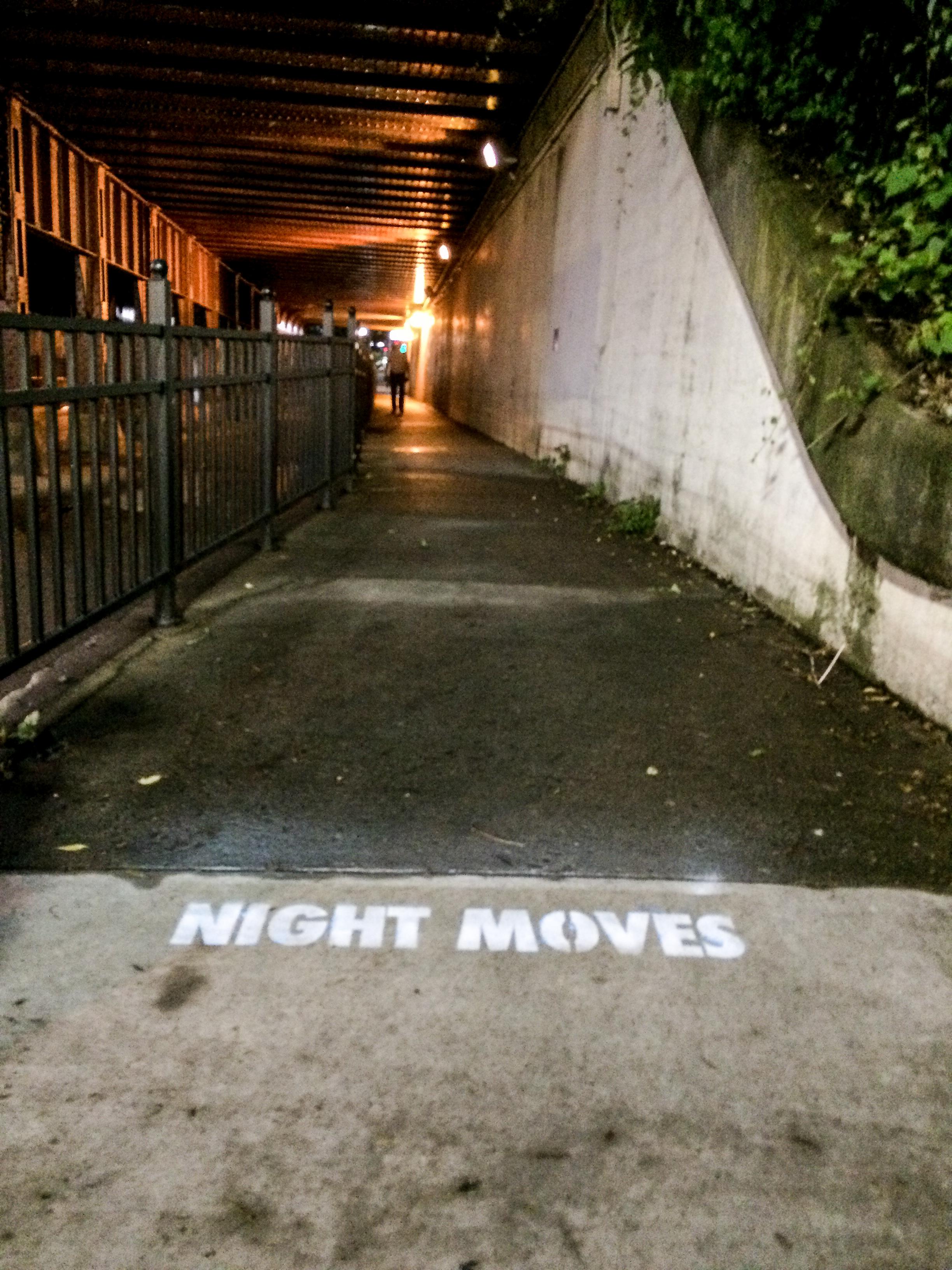 Night Moves 2-2.jpg