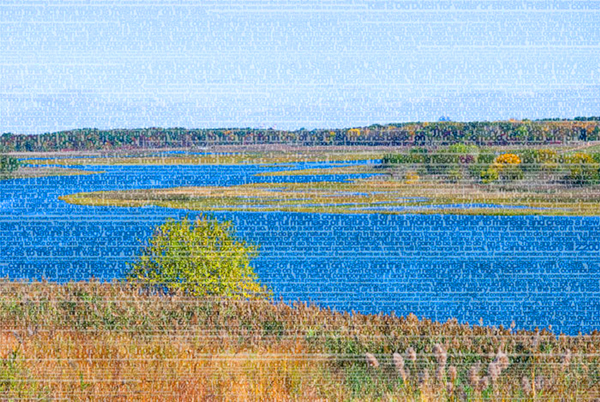 """Stephanie Lempert """"Fresh Kills Park""""  Courtesy the Artist and Claire Oliver Gallery"""