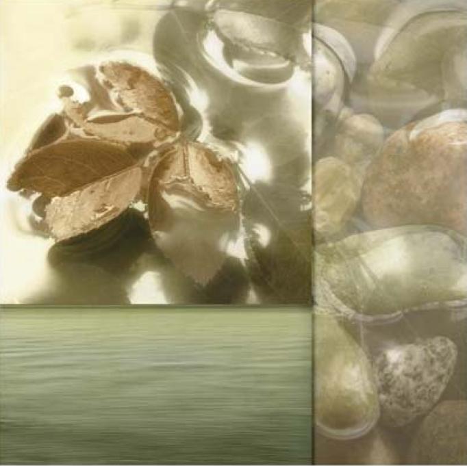 Zen Elements 1