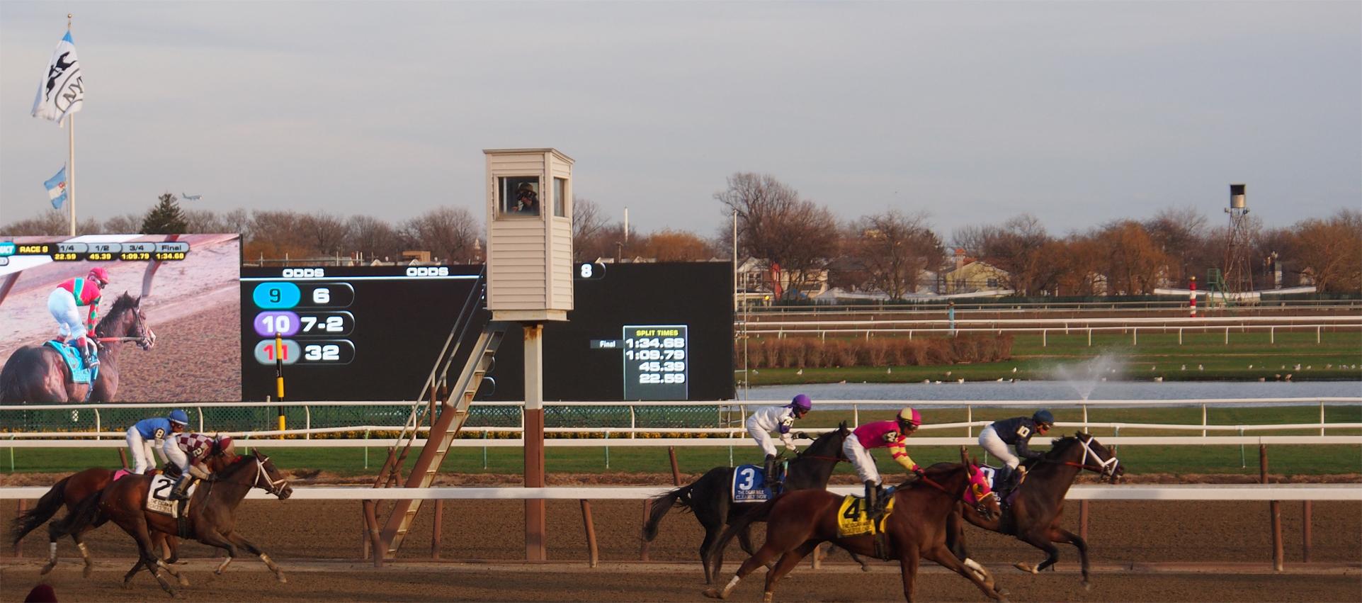 cigar mile horse.jpg