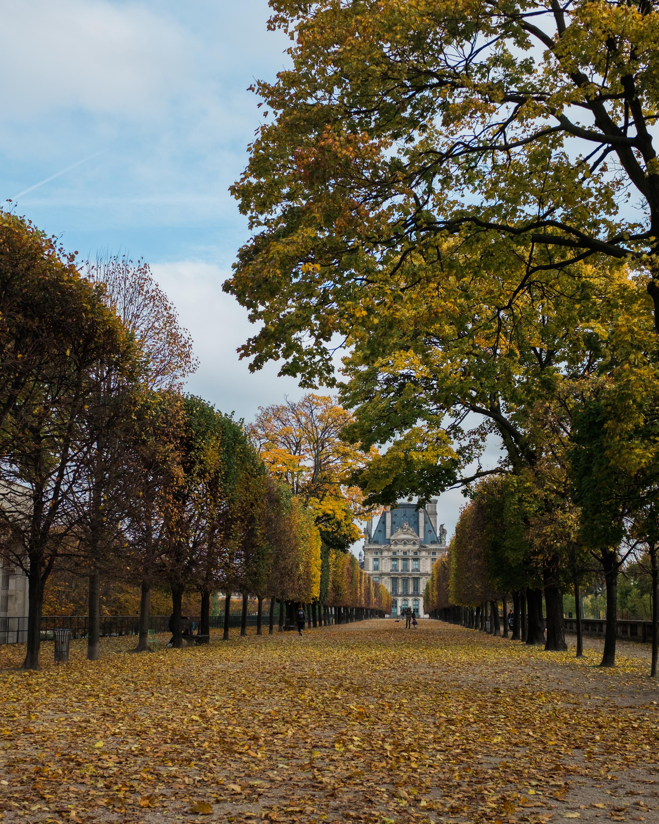 london-britian-cambridge-stmalo-mont-saint-michel-france-normandy-paris-096.jpg