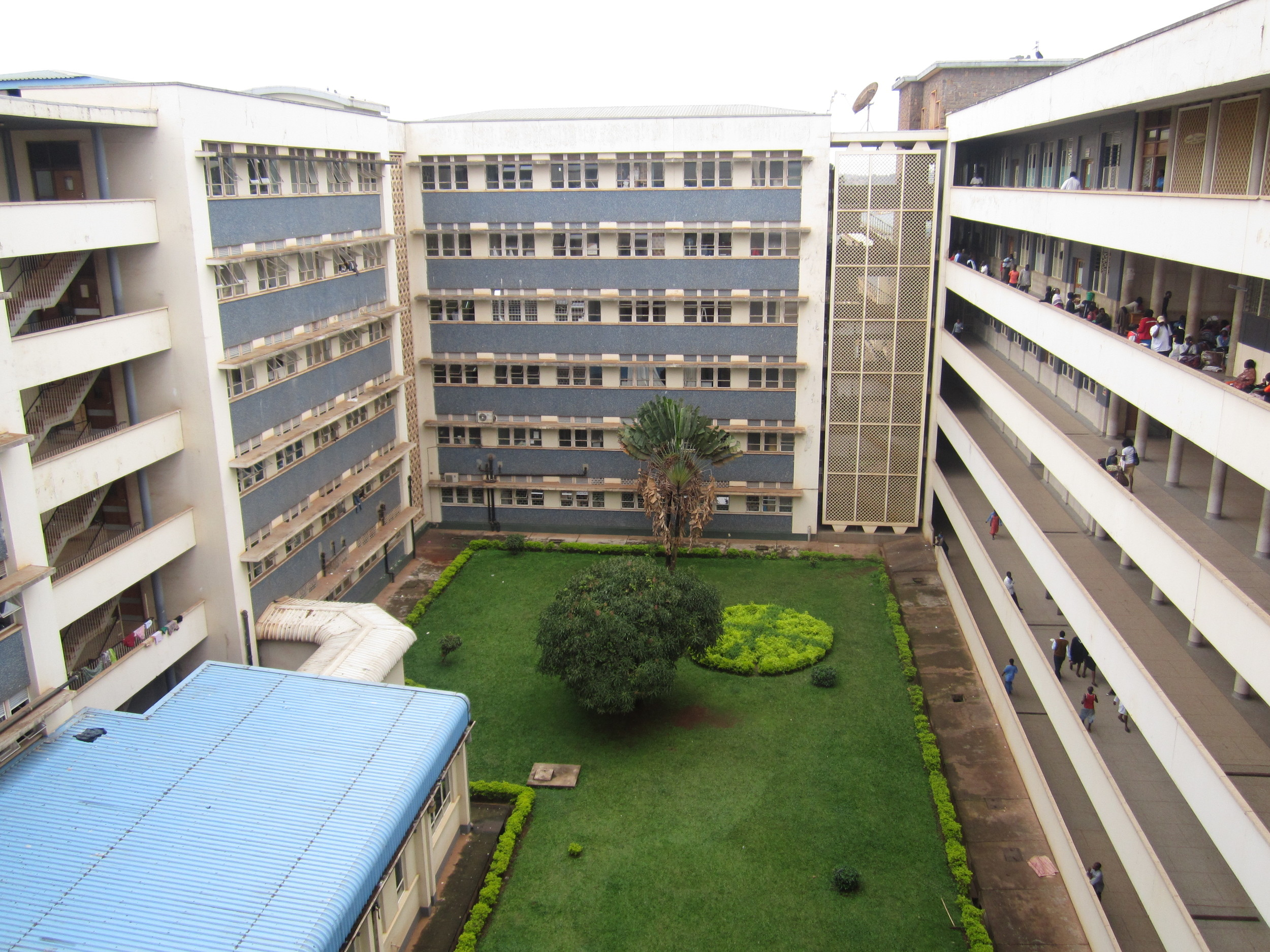 A student's view of Makarere University, the largest and oldest post-secondary educational institution in Uganda.