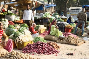 Healthy food is available in India, as it is in most developing countries, it is just not always affordable. Reducing costs of food for the poor and encouraging farmers to continue growing food must go hand-in-hand in the attempt to reduce hunger.