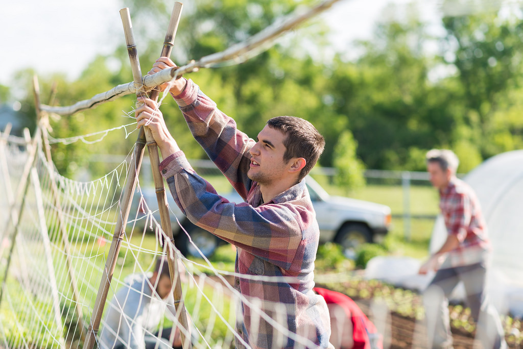 Second year student Michael Watkins, mends netting for pea trellising. Michael had previously locally harvested the bamboo for the trellising. Learning to work with materials that can be utilized in the Developing World is a value of those who work in the garden.