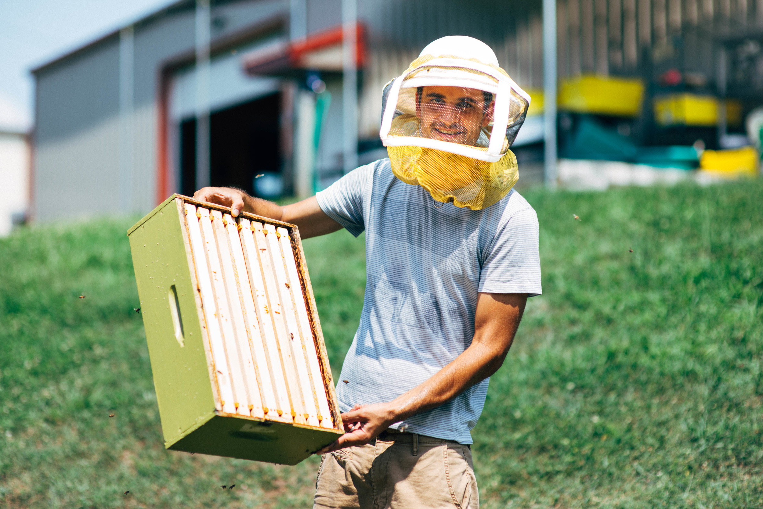 Our bee operation, spearheaded by Jeff Sherrod (pictured above), began last summer with three hives and has now expanded to six. Bees are the world's most important pollinator of food crops, and it is estimated that one third of the food that we consume each day relies on pollination primarily from bees. In addition to pollinating our community garden, our first honey harvest produced over 200 pounds of honey.