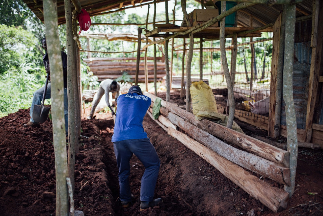 The college students are working to improve the pig pen for our animal husbandry project.