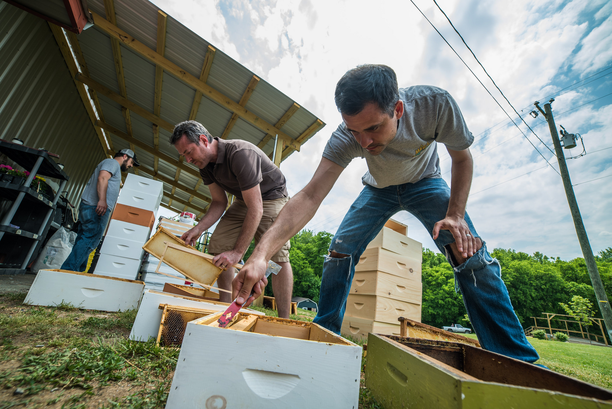 Jeff Sherrod (right) prepares the 25 hives for their permanent location.