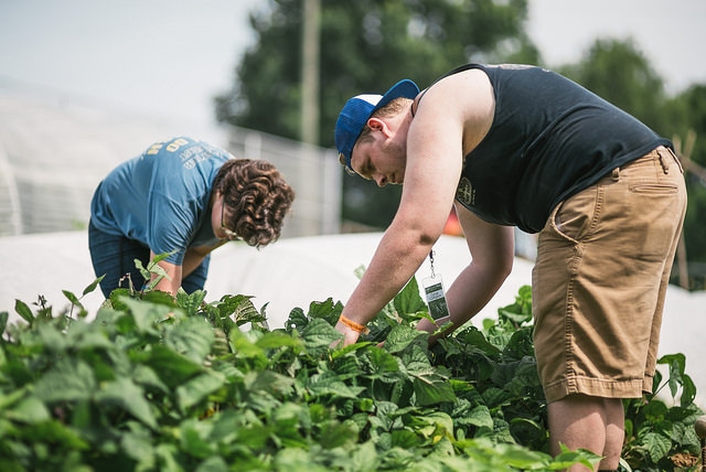 500 middle and high schoolers from around the country come to Nashville for service weeks with SLAM each year. One of the service opportunities they complete is work in a community garden.