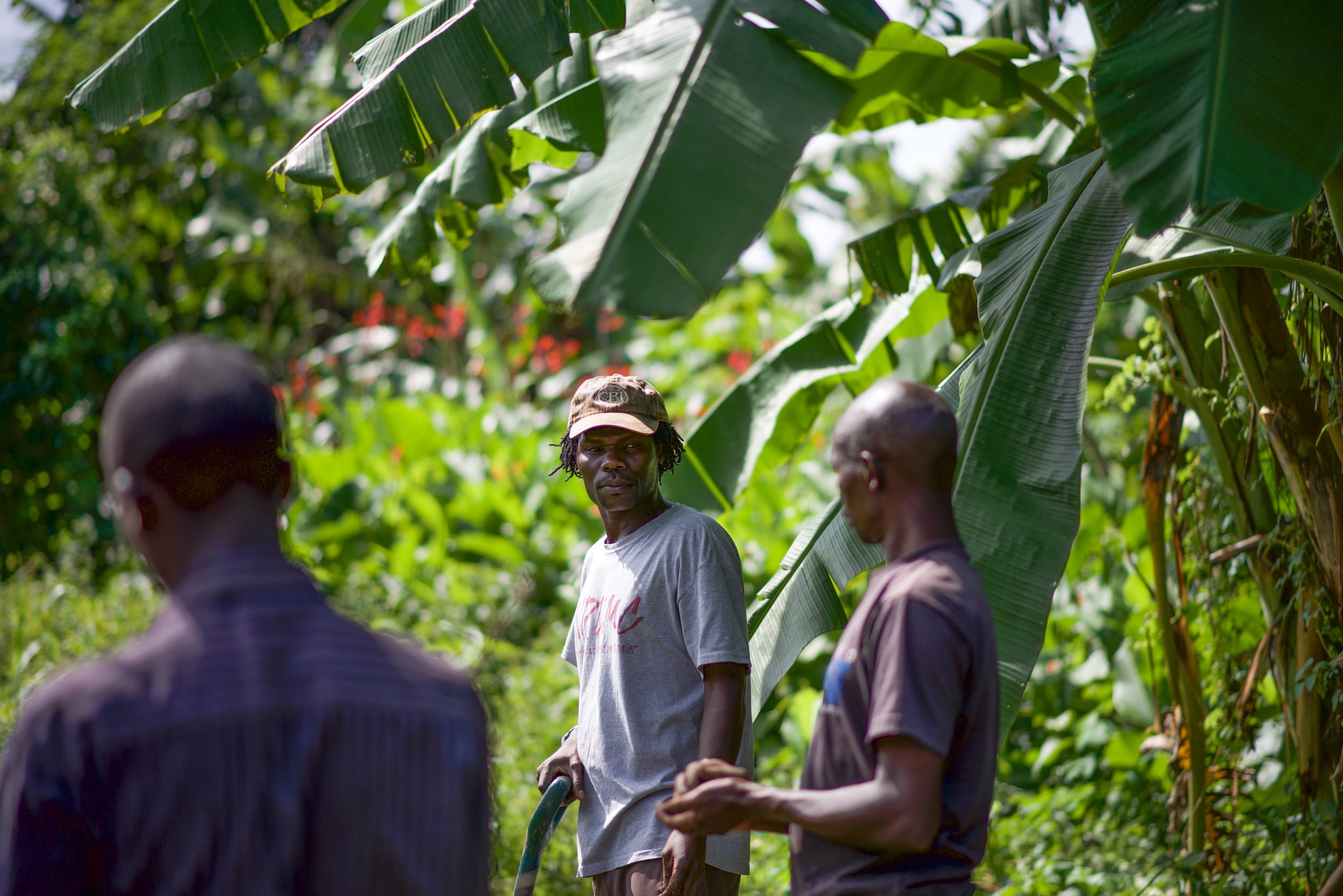 Reuben Ndwiga (center) has transformed his home garden in Kenya, and has trained dozens of neighbors in the methods he's learned. His relocation to Uganda will help our team immensely.