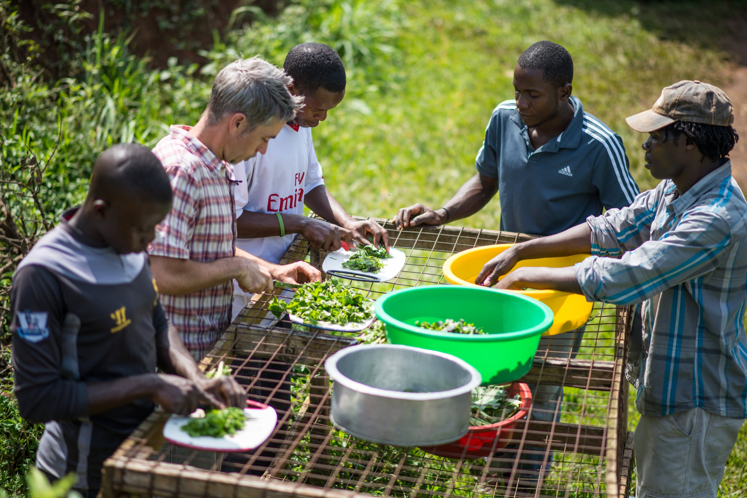 Seth (left middle) and Reuben (far right) help the students process fresh produce and prepare the greens for their first salad. They loved it!