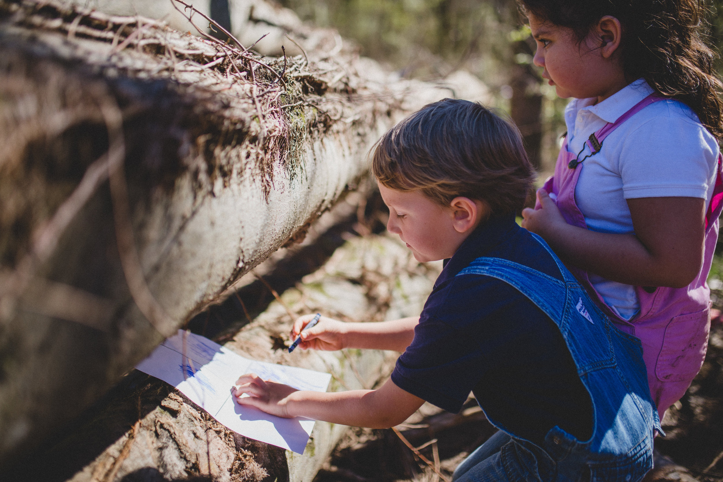 As students explore, they record observations they make when they look more closely at the bugs, flowers, and trees they encounter.