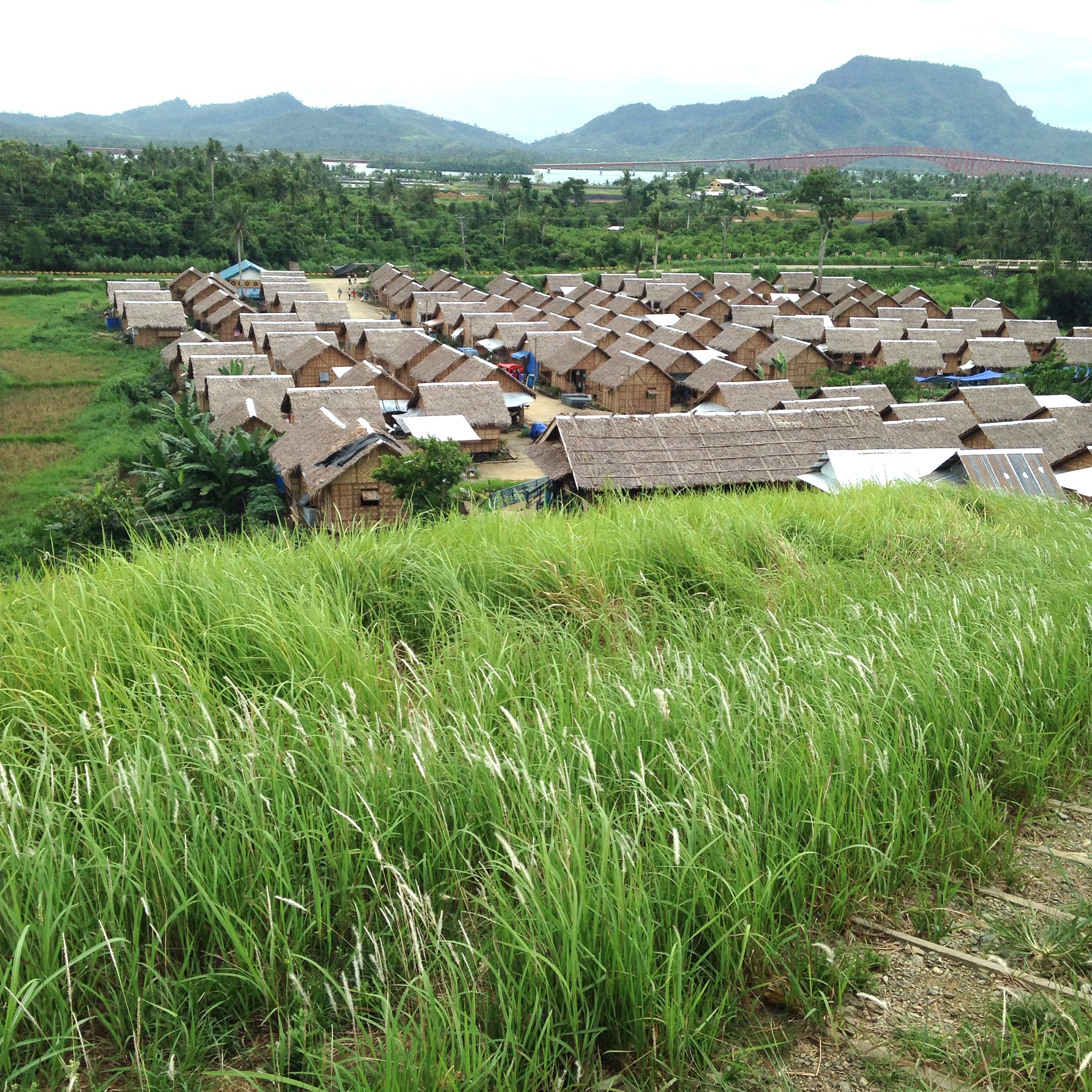 This relocated community about a 20 minute drive outside of Tacloban provides suitable housing for over 100 families. But livelihood that far from the city remains a challenge.