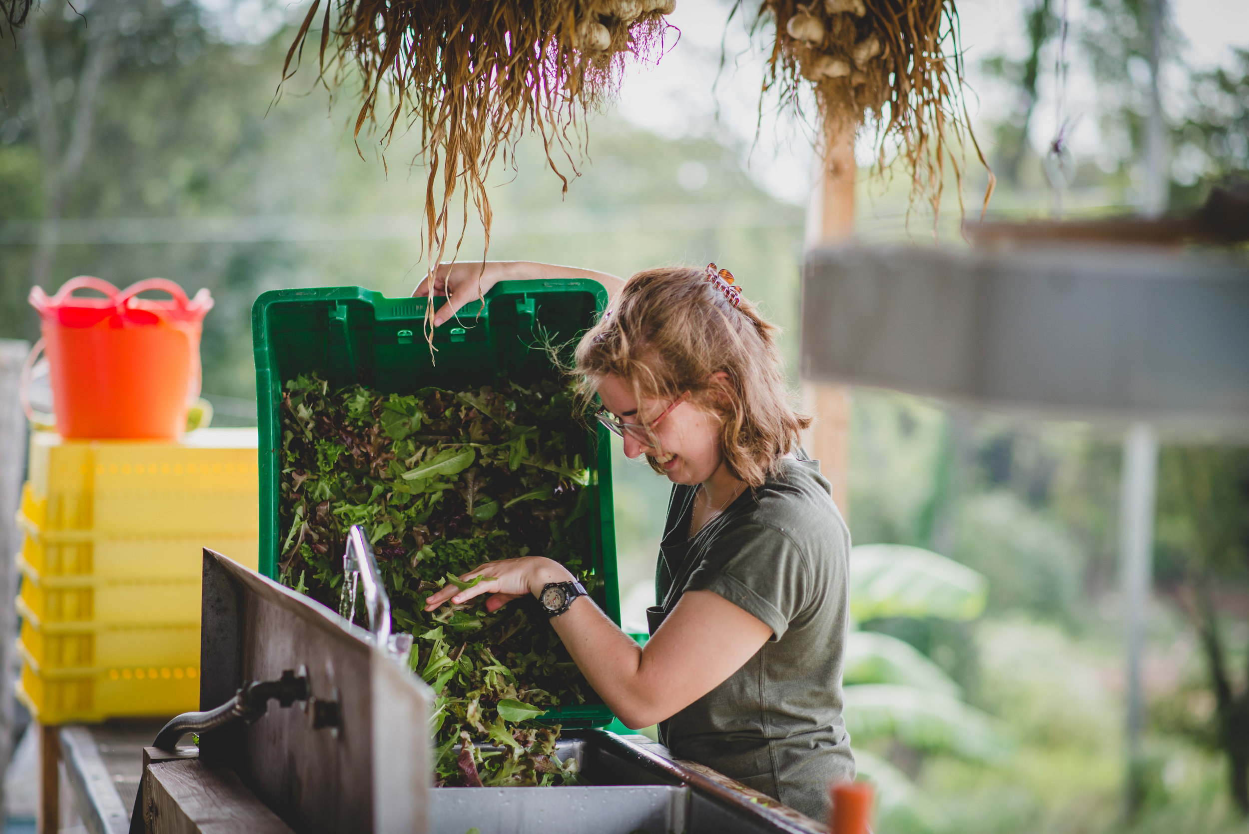 A good portion of Jenna's week is spent in the community garden, where she is learning about sustainability.