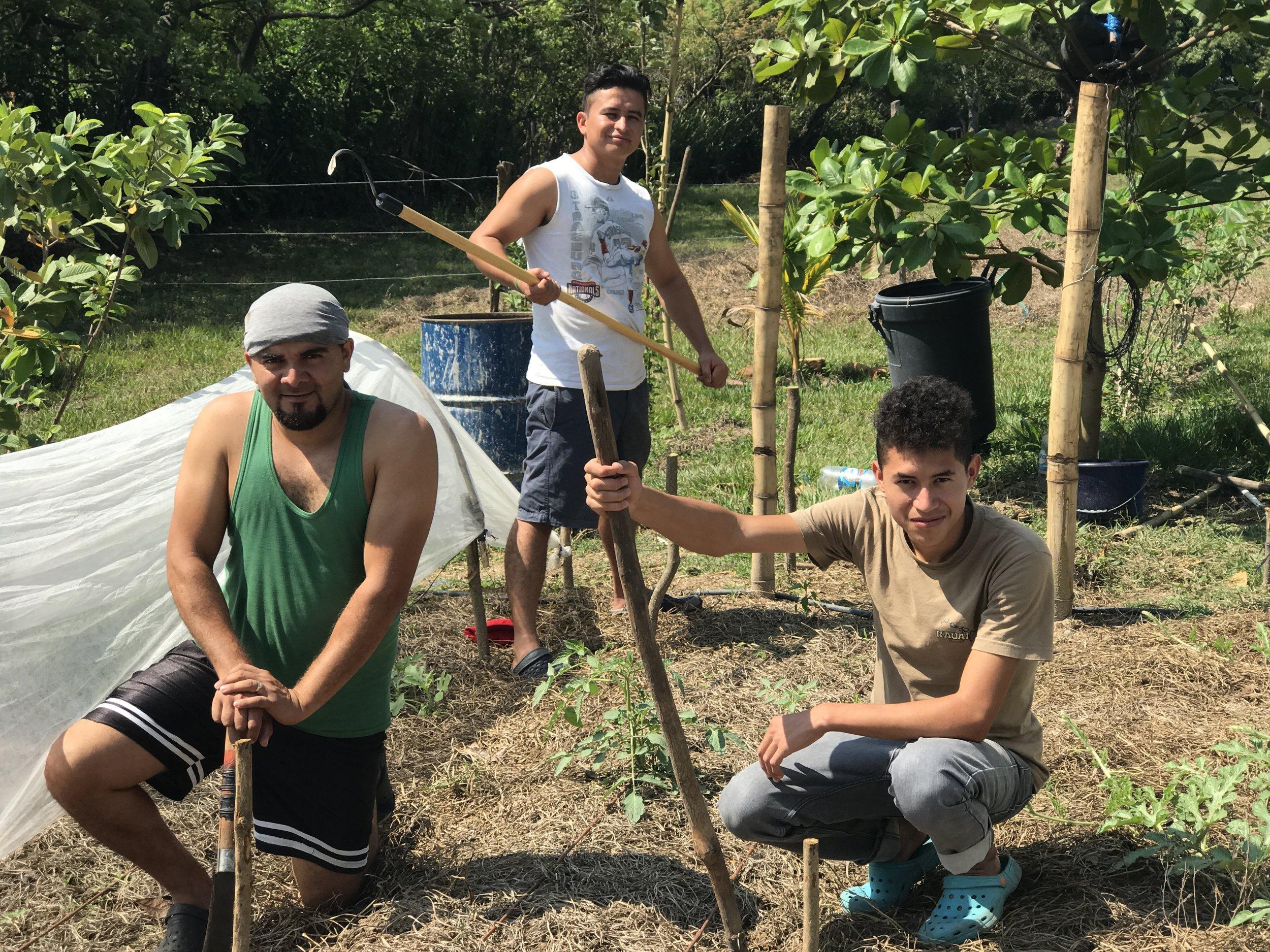 garden guys ES 2.JPG