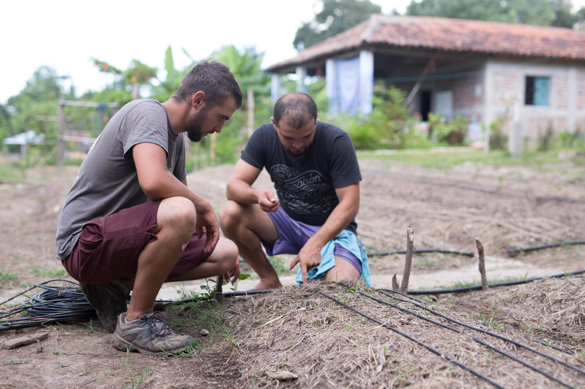In 2017 Michael worked alongside G.O.D Latin America Cooperative, Antonio in the G.O.D demonstration garden in El Salvador.