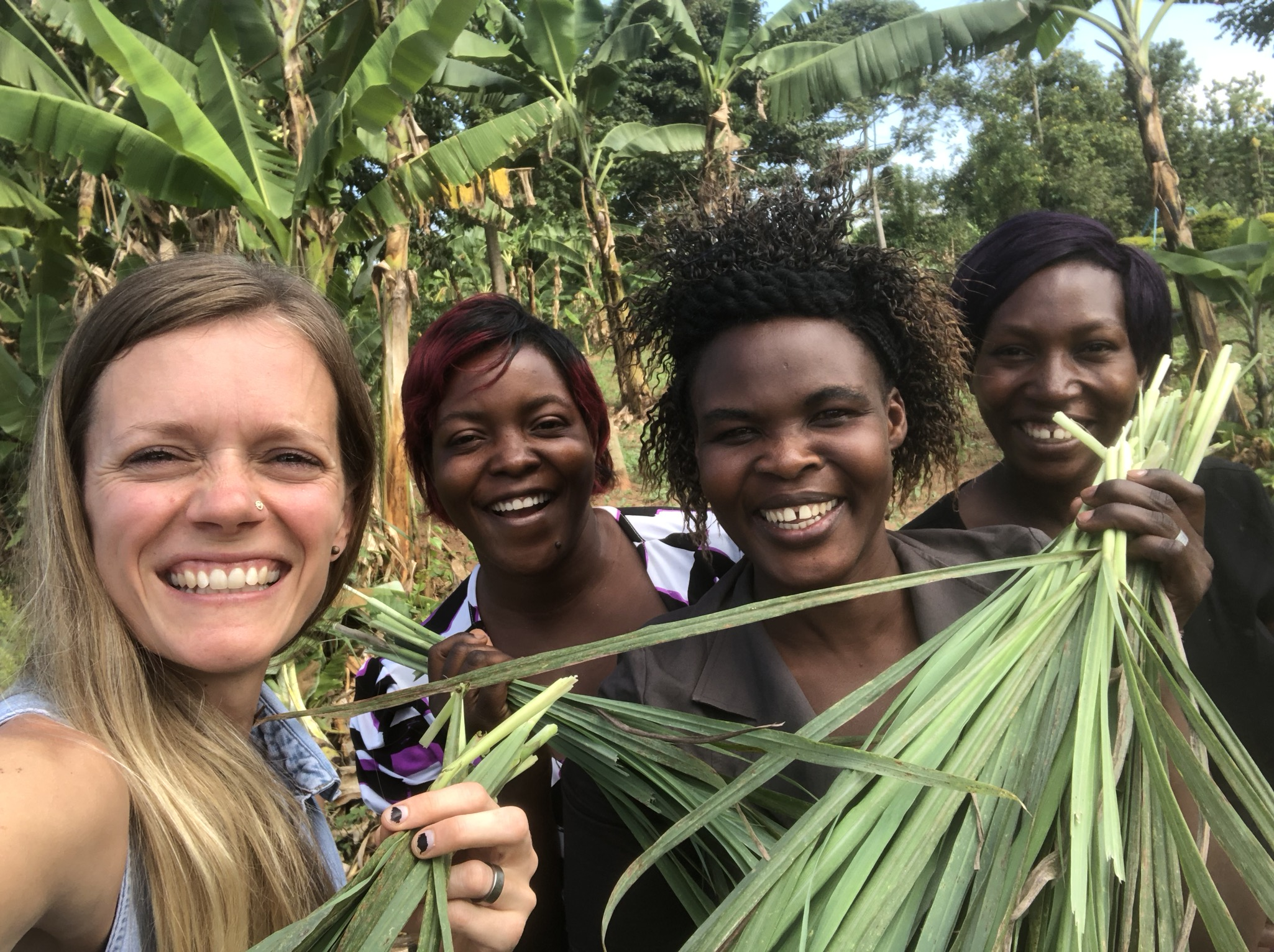 Grace (left) with our female cooperatives in Uganda: Josephine Nakimuli, Cissy Namukisa, and Annette Nabugo, harvesting lemongrass on our East Africa campus.