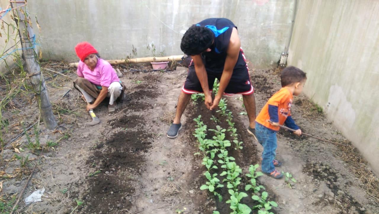 New Gardening Methods El Sal Global Outreach Developments Int L