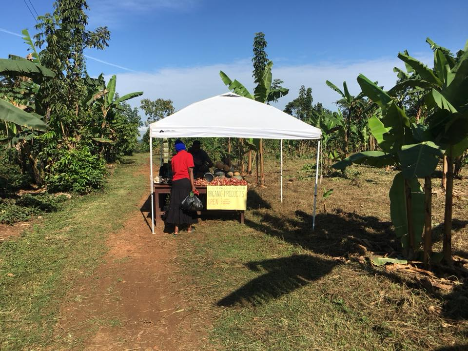 """A woman purchases foodstuff for her family out of the abundance of Faithwells Gardens. In Lubega's words, """"God blessed our garden with a little more food to share and sell to meet the food needs people have."""""""