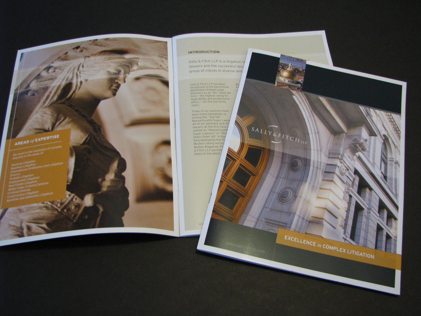 Sally & Fitch Corporate Brochure 2013-14