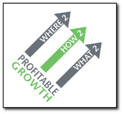 Profitable Growth CPM Solutions.png