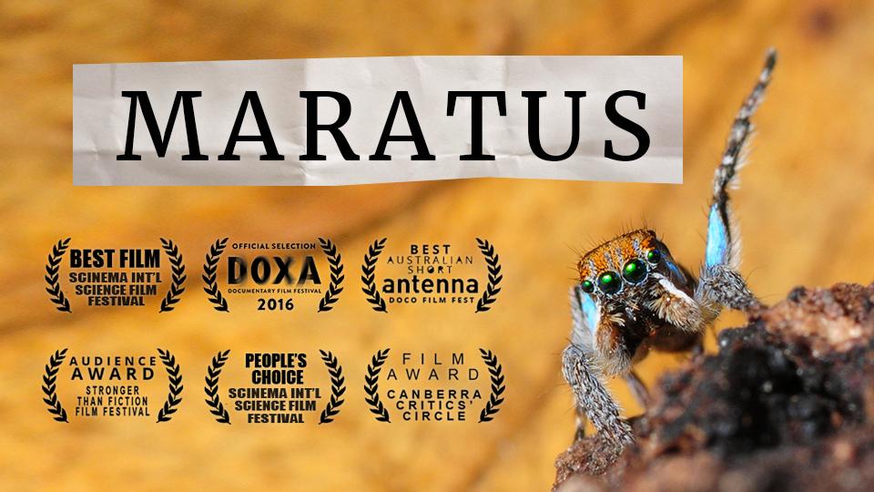 MARATUS:  a docu-mystery (2015)