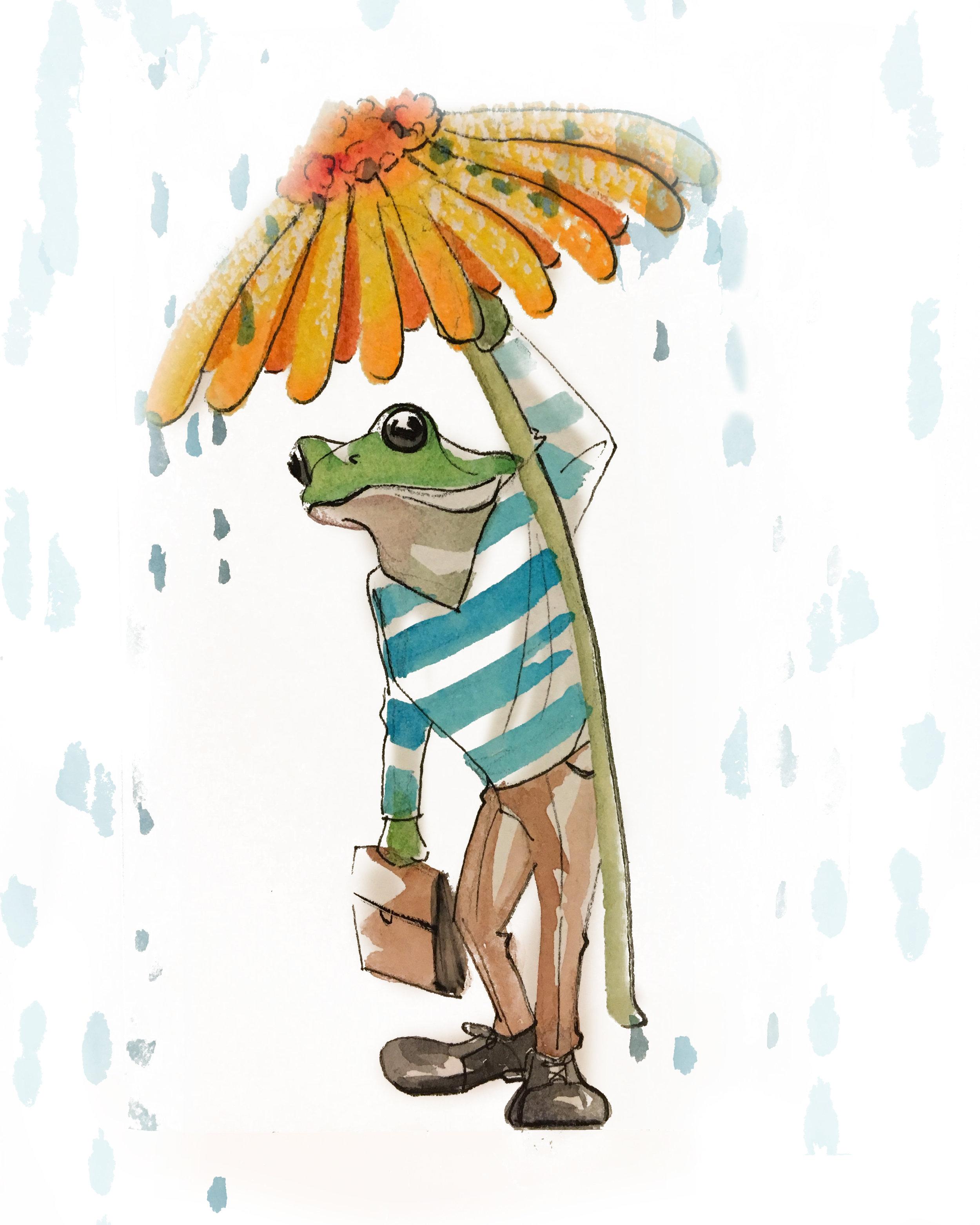 RainFrog.jpg