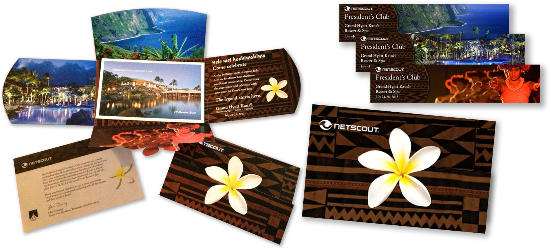 netscout-direct-mailer2.jpg