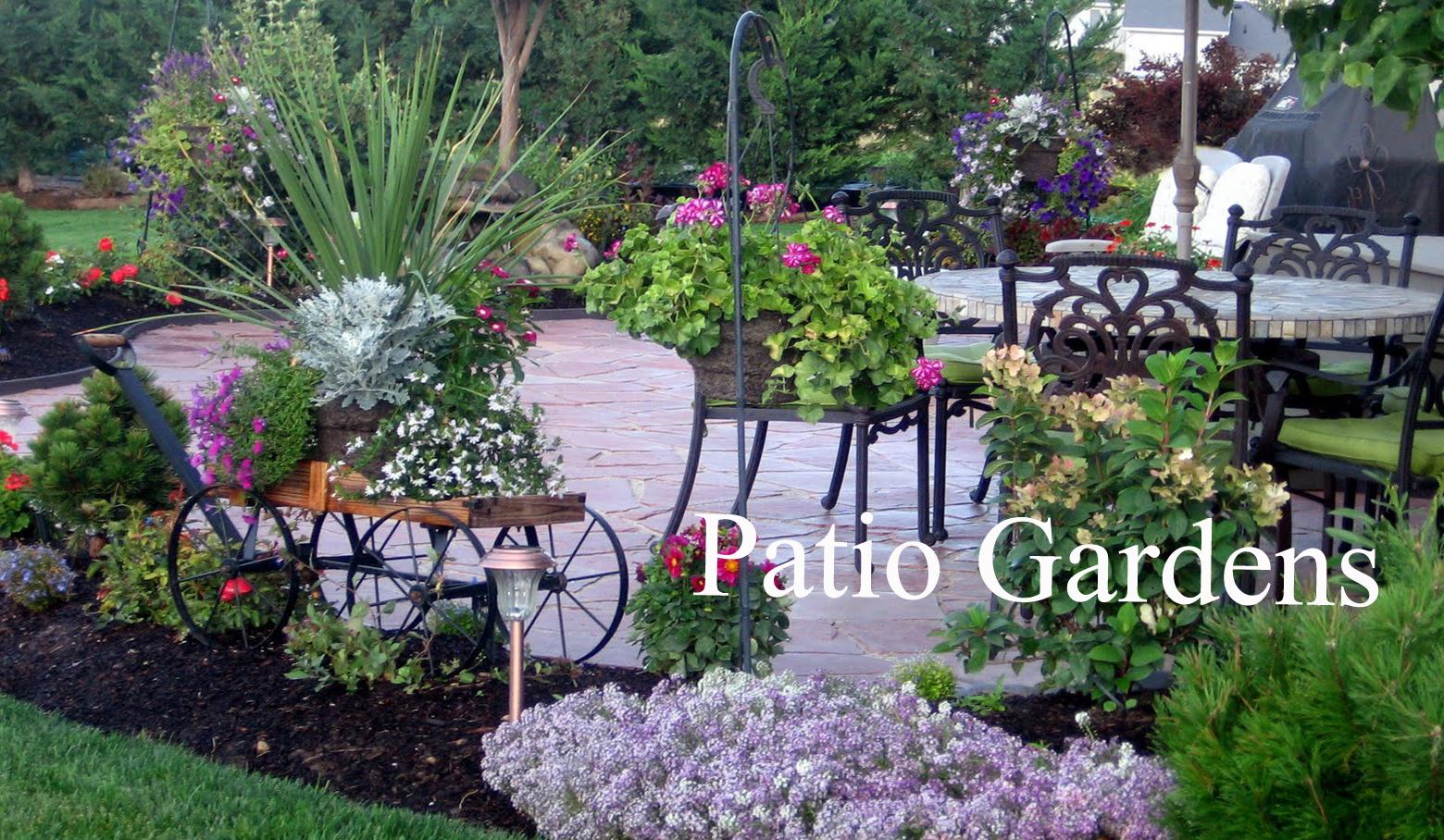 Patio-garden-lanscape-outdoor-containers3.jpg