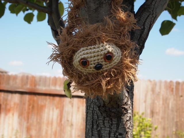 sloth close up.jpg