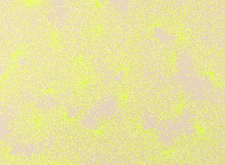 """Mellow Yellow.""pen on paper.22""h x 30""w."