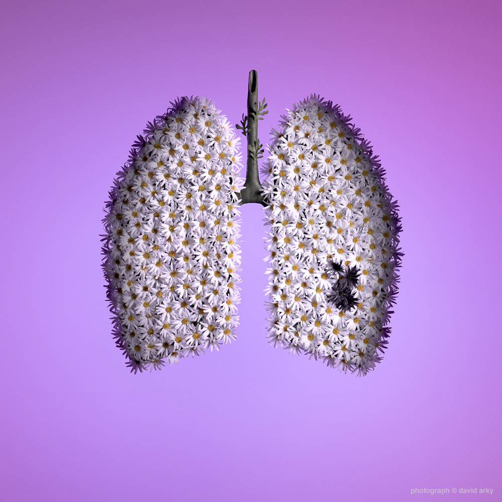 lungs with ©.jpg