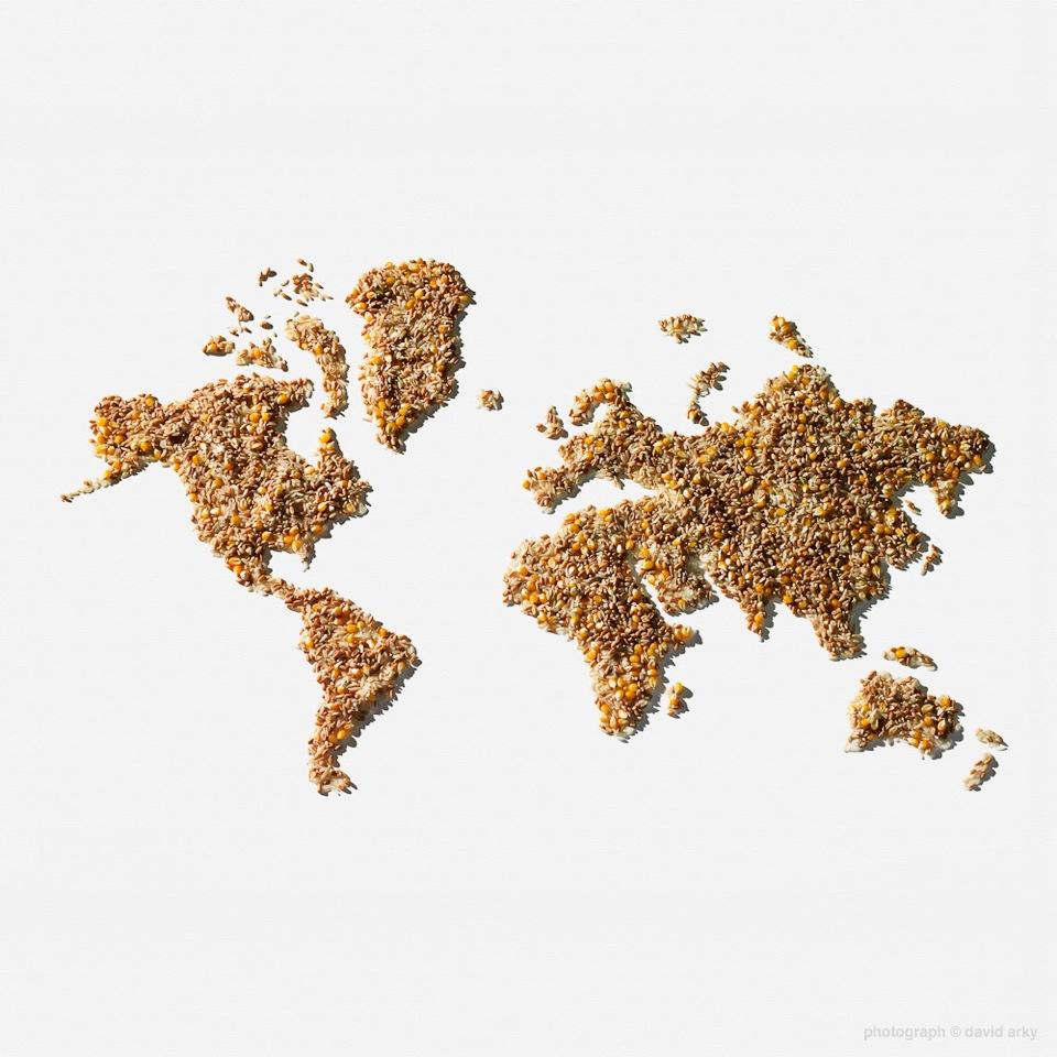 grain image.jpeg