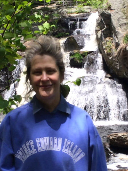 the waterfalls at Devils Hopyard