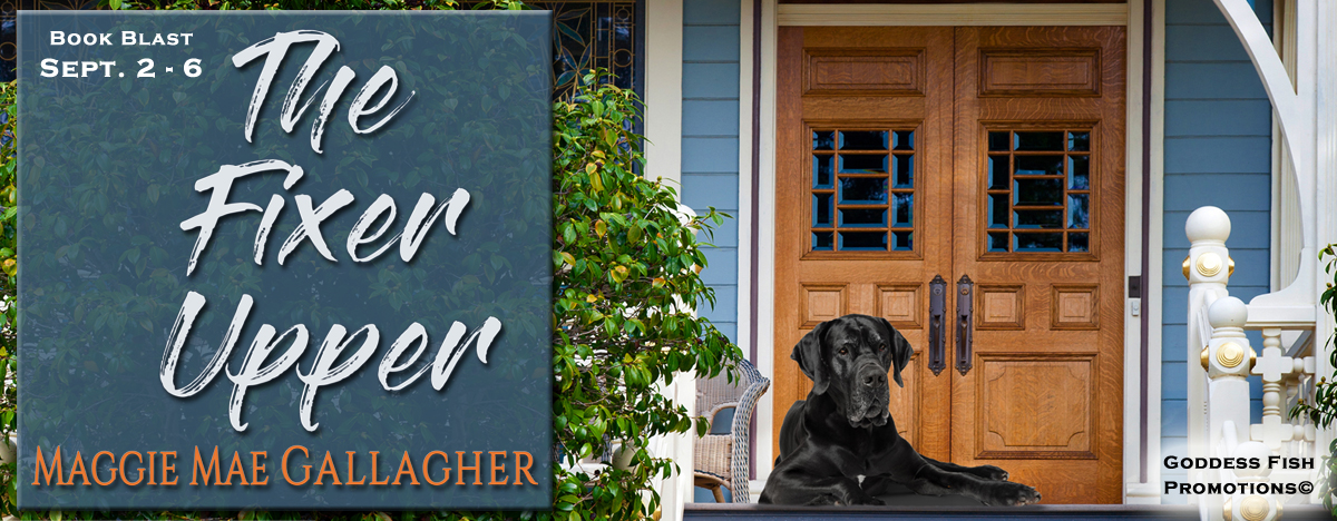 TourBanner BookBlast_TheFixerUpper copy.jpg