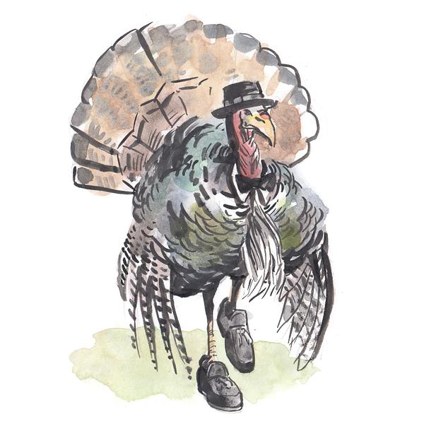 dapper-turkey-1.png