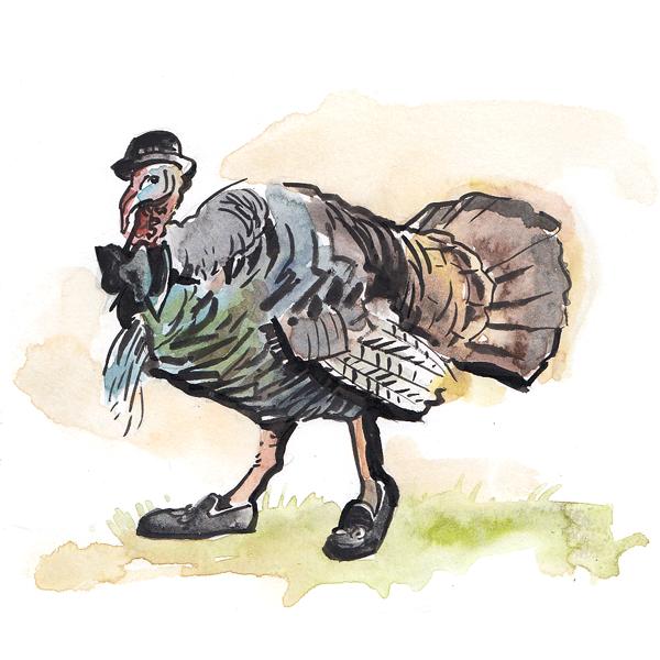 dapper-turkey-2.png