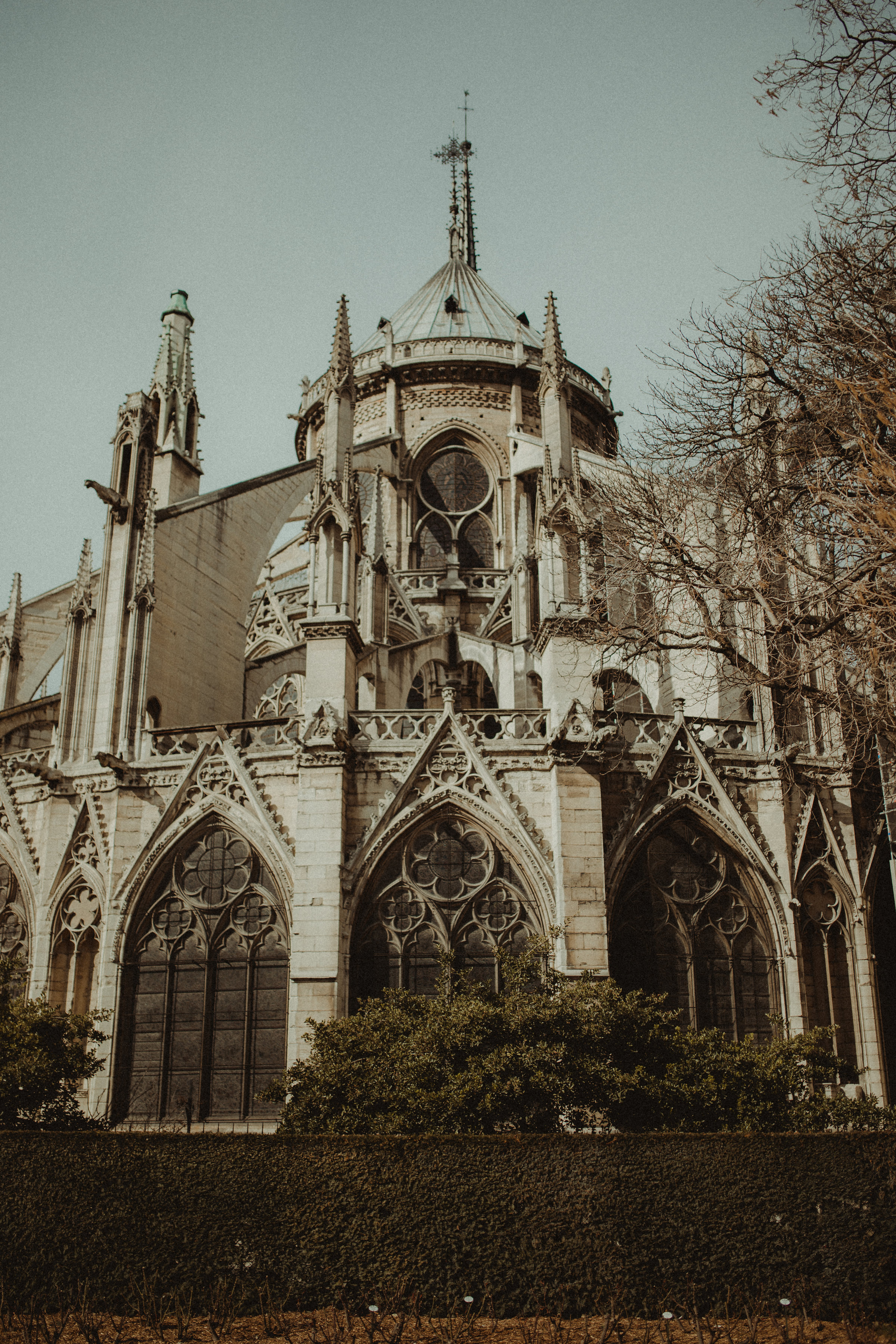 The Notre Dame in Paris, France. Photo by  Leigh Ann Cobb Photography.