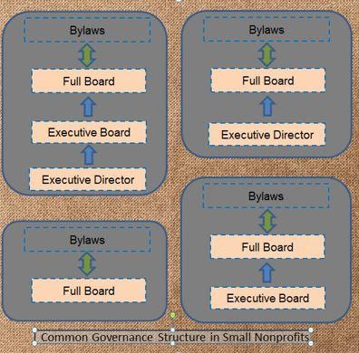 NP Governance.JPG