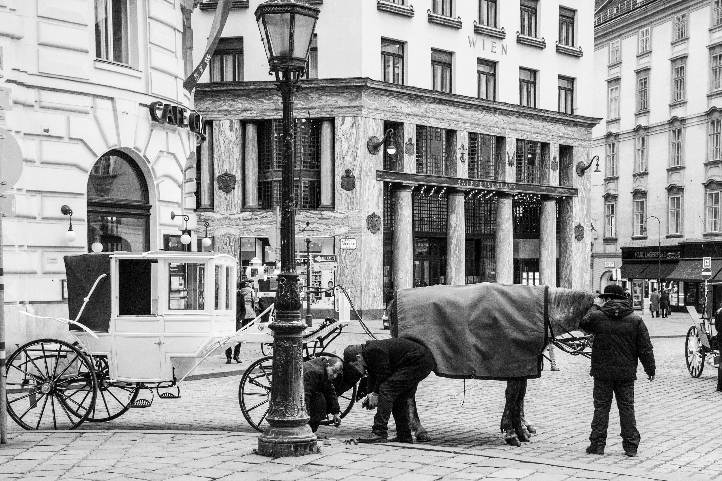 1010 Wien - Michaelerplatz   EOS 70D - F/3,5 - 1/500 Sek - ISO 800 - 26mm