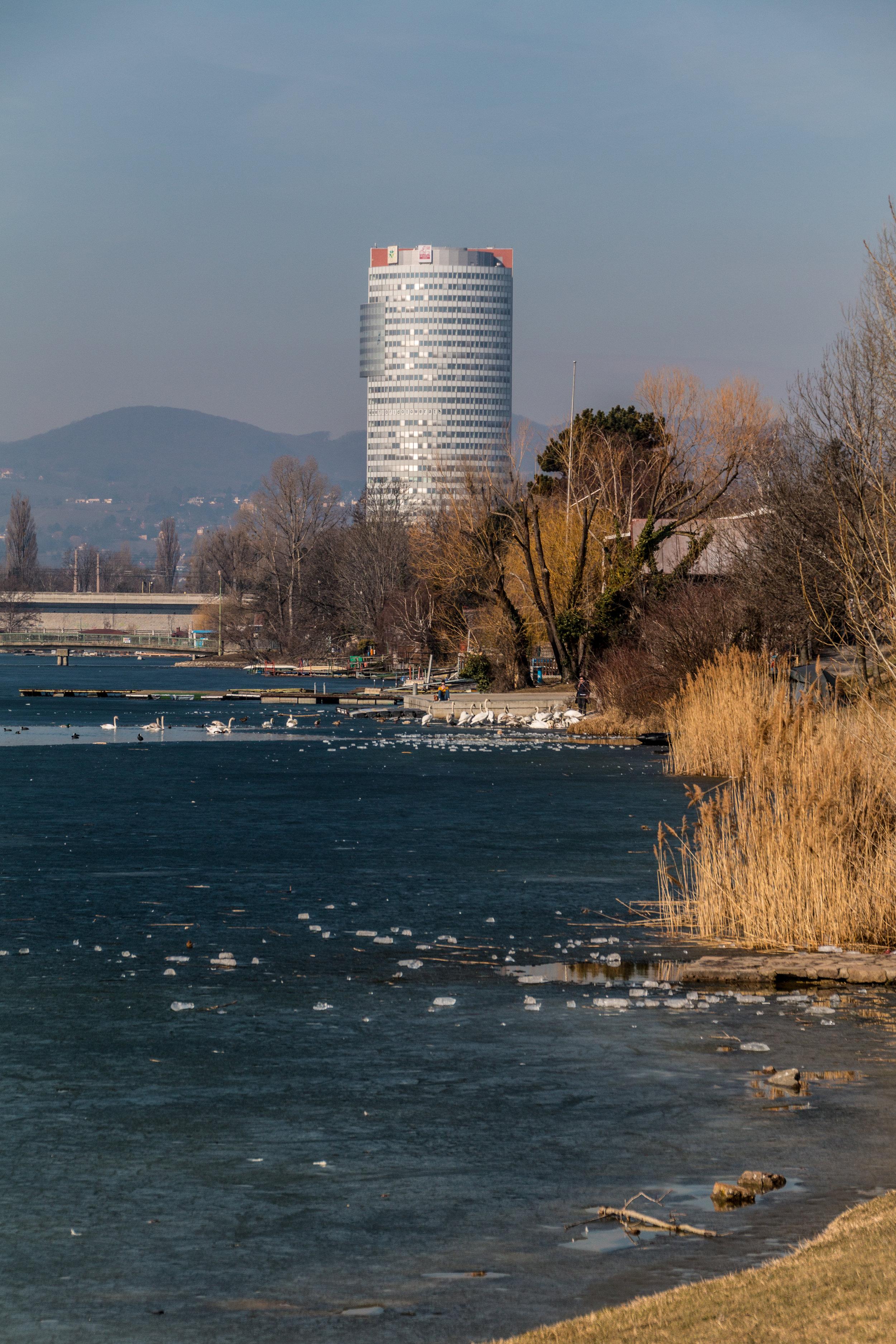1210 Wien - Alte Donau   EOS 70D - F/8 - 1/500 Sek - ISO 100 - 87mm
