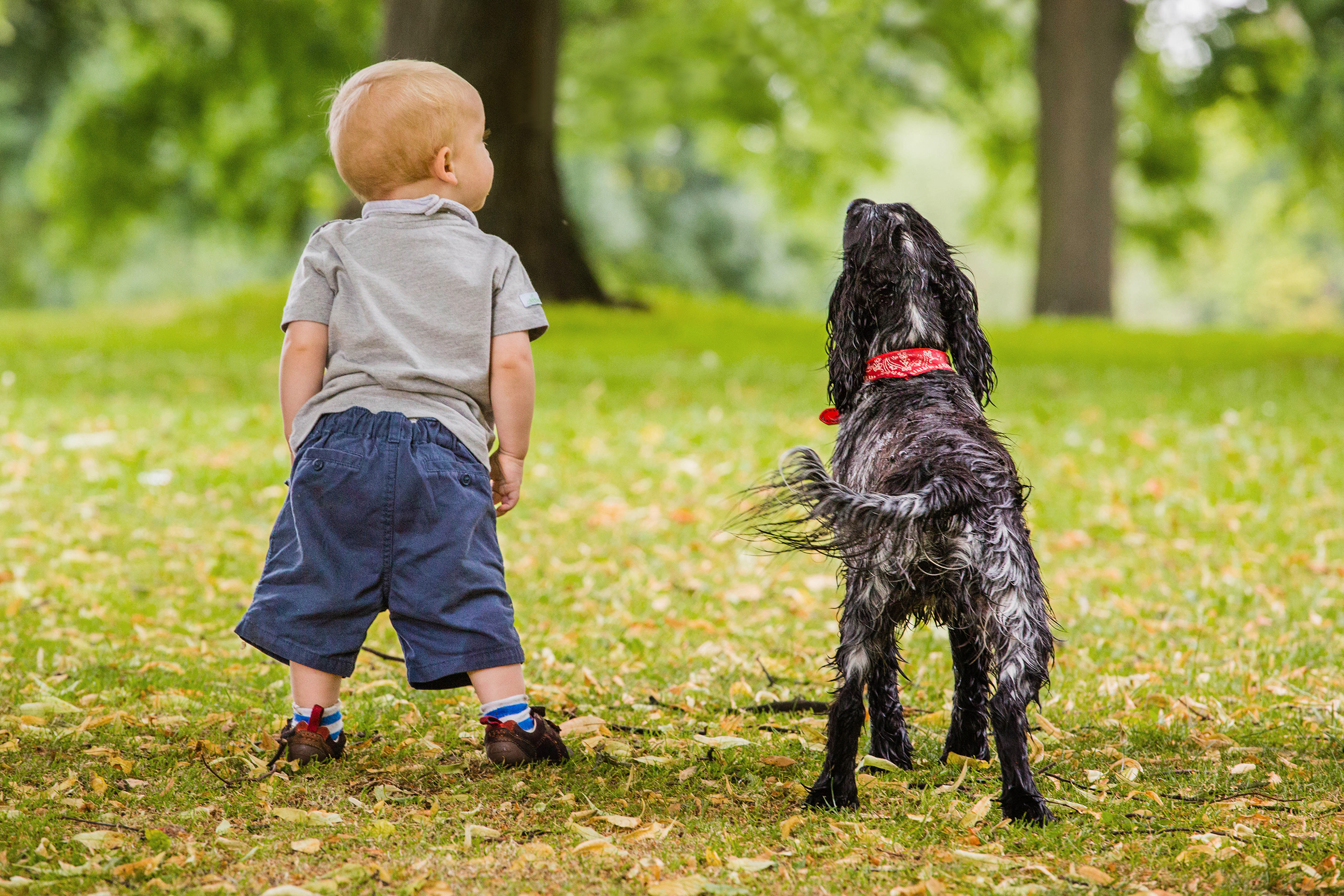 Child and pet photography London and Surrey