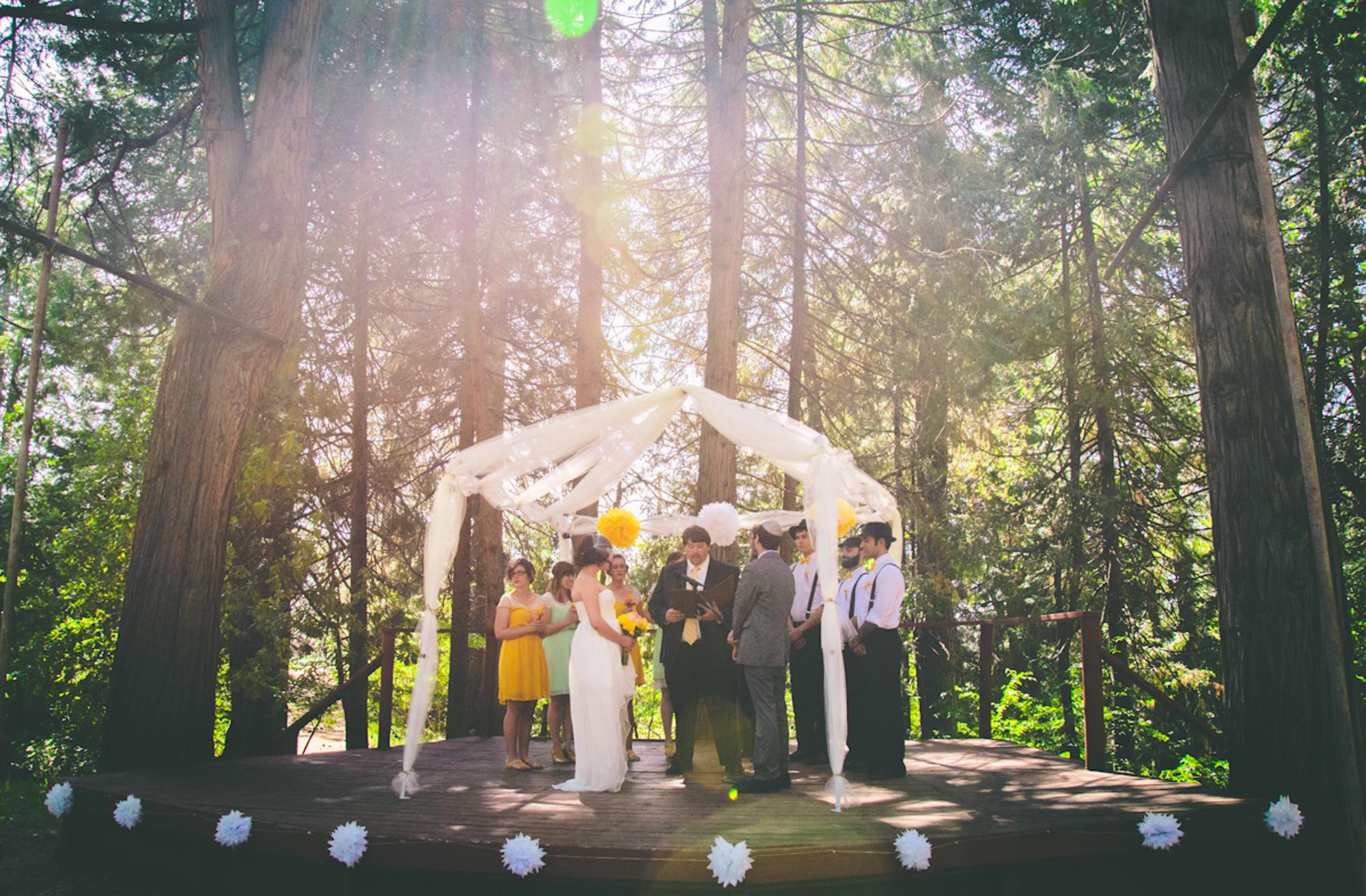 Arielle Vey Weddings-1.jpg