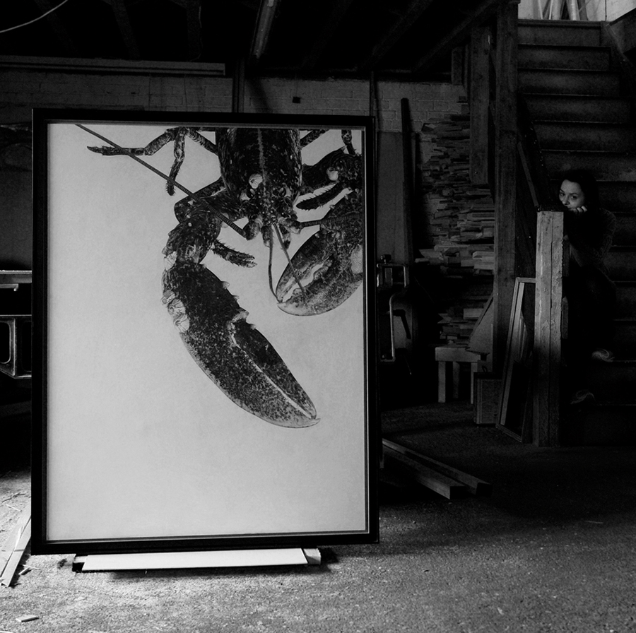 Vicky White | European Lobster III | Pencil on panel