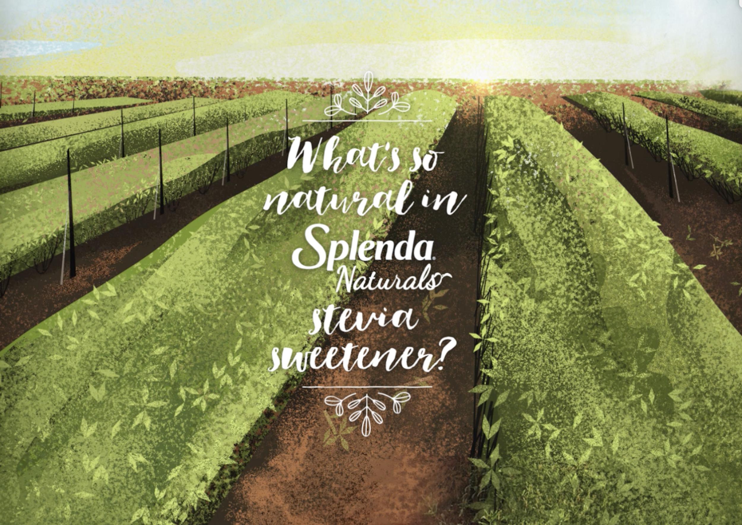 Stevia commercial design - Here are some design I did for Tendril's Splenda commercial.