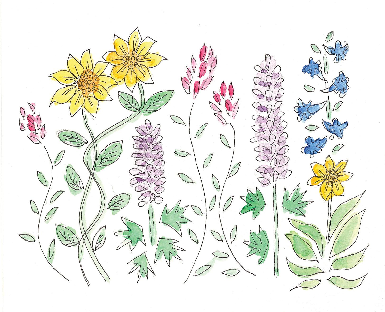 more wildflowers.jpg