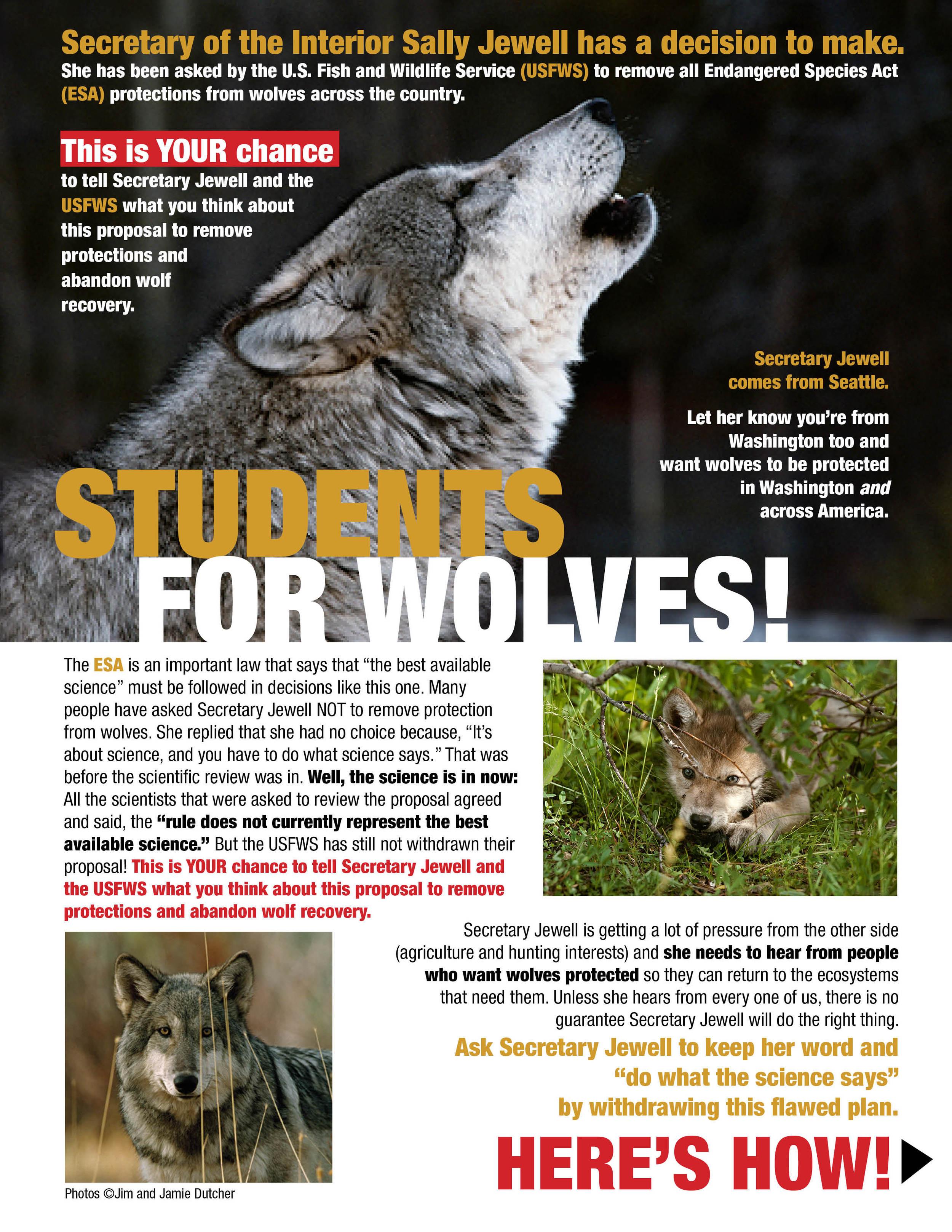 LWW student flyer.jpg